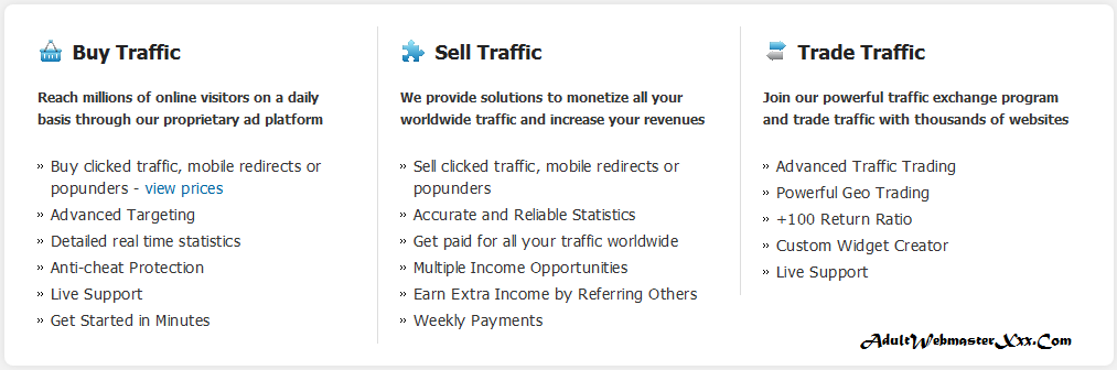 adult webmaster buy sell and trade traffic